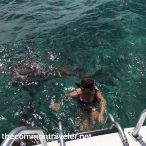 San Pedro woman with sharks
