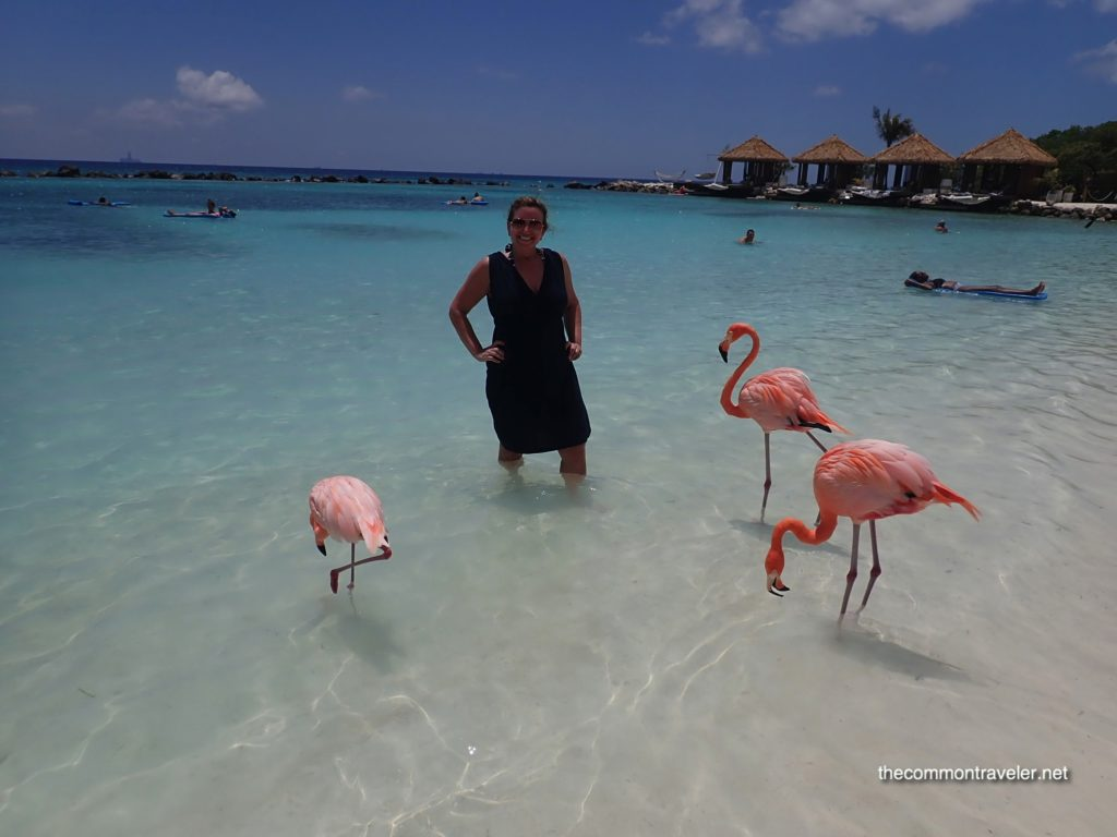 Aruba Renaissance woman surrounded by 3 flamingoes at Flamingo Beach