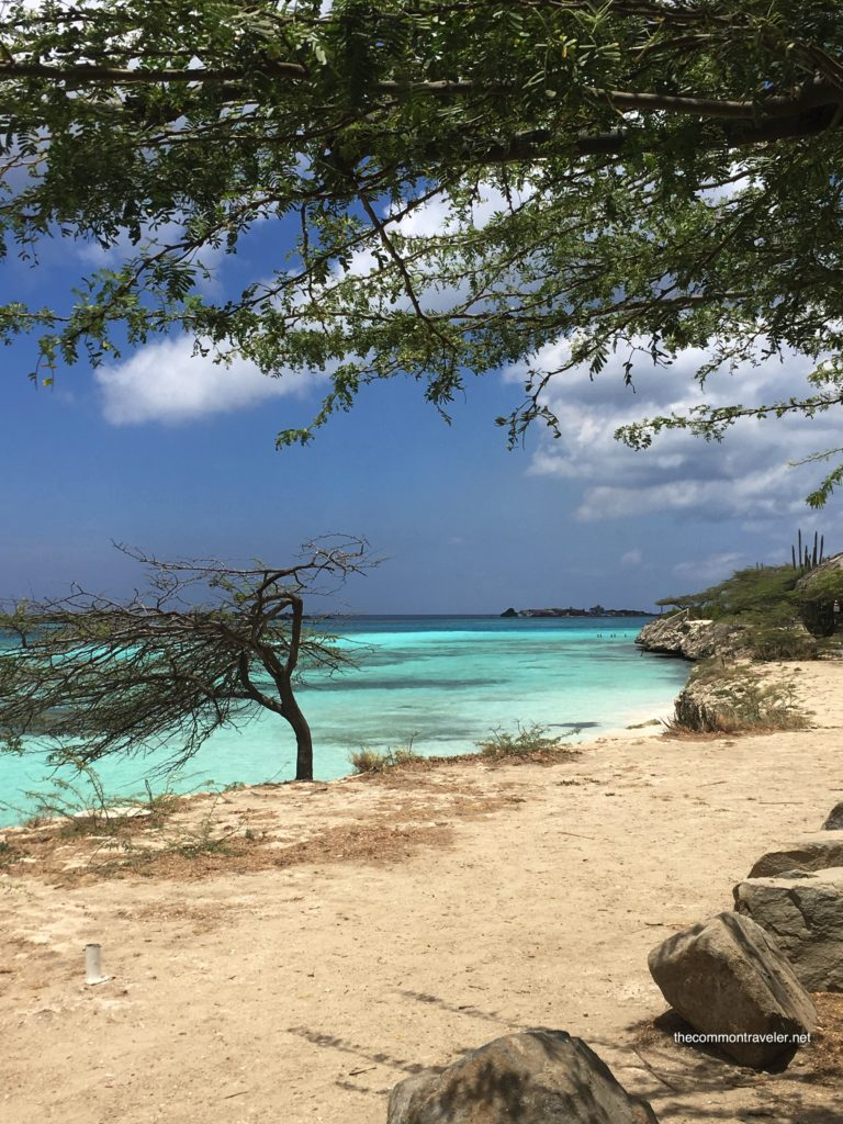 Aruba Sightseeing tips featured by top travel blog, The Common Traveler: beach with tree and clear water in Aruba