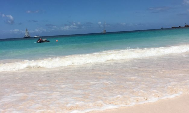 Unique Things to Do in Barbados on a Port Day