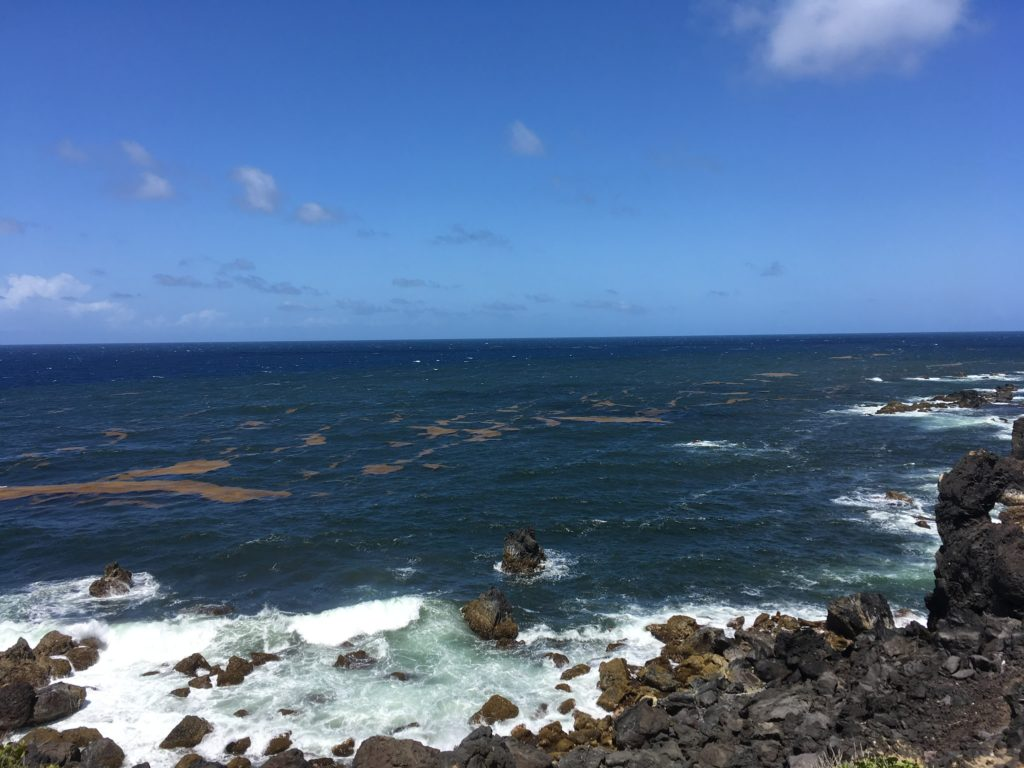 The Best Things to Do in St Kitts During a Port Day featured by top travel blog, The Common Traveler: view of volcanic rocks and Atlantic Ocean in St. Kitts