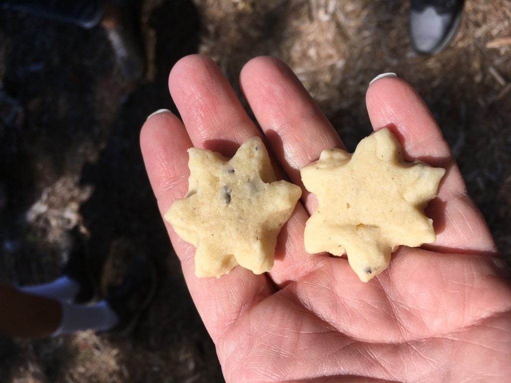 lavender farm star shaped lavender cookies