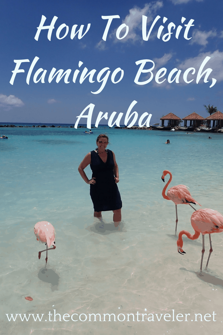 Visiting Flamingo Beach in Aruba, tips featured by top affordable travel blog, The Common Traveler: Tips and review on visiting Flamingo Beach, Aruba. #flamingobeach #flamingobeacharuba #aruba