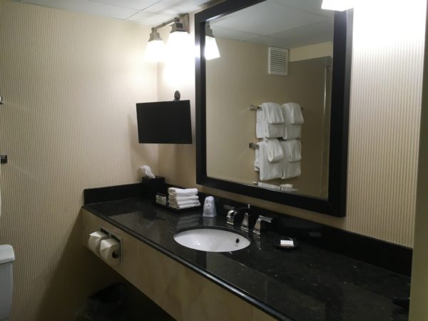 Niagara Falls bathroom counter with mirror in Sheraton