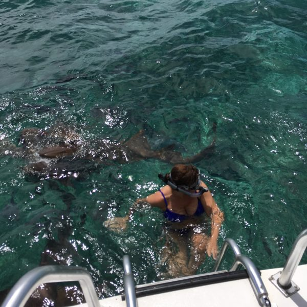 Best Things to Do in Caye Caulker featured by top US travel blog, The Common Traveler: woman with snorkel mask going down stairs with nurse sharks in water