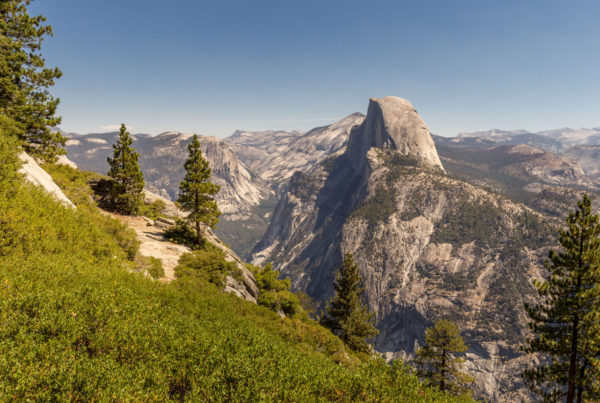Yosemite Park view