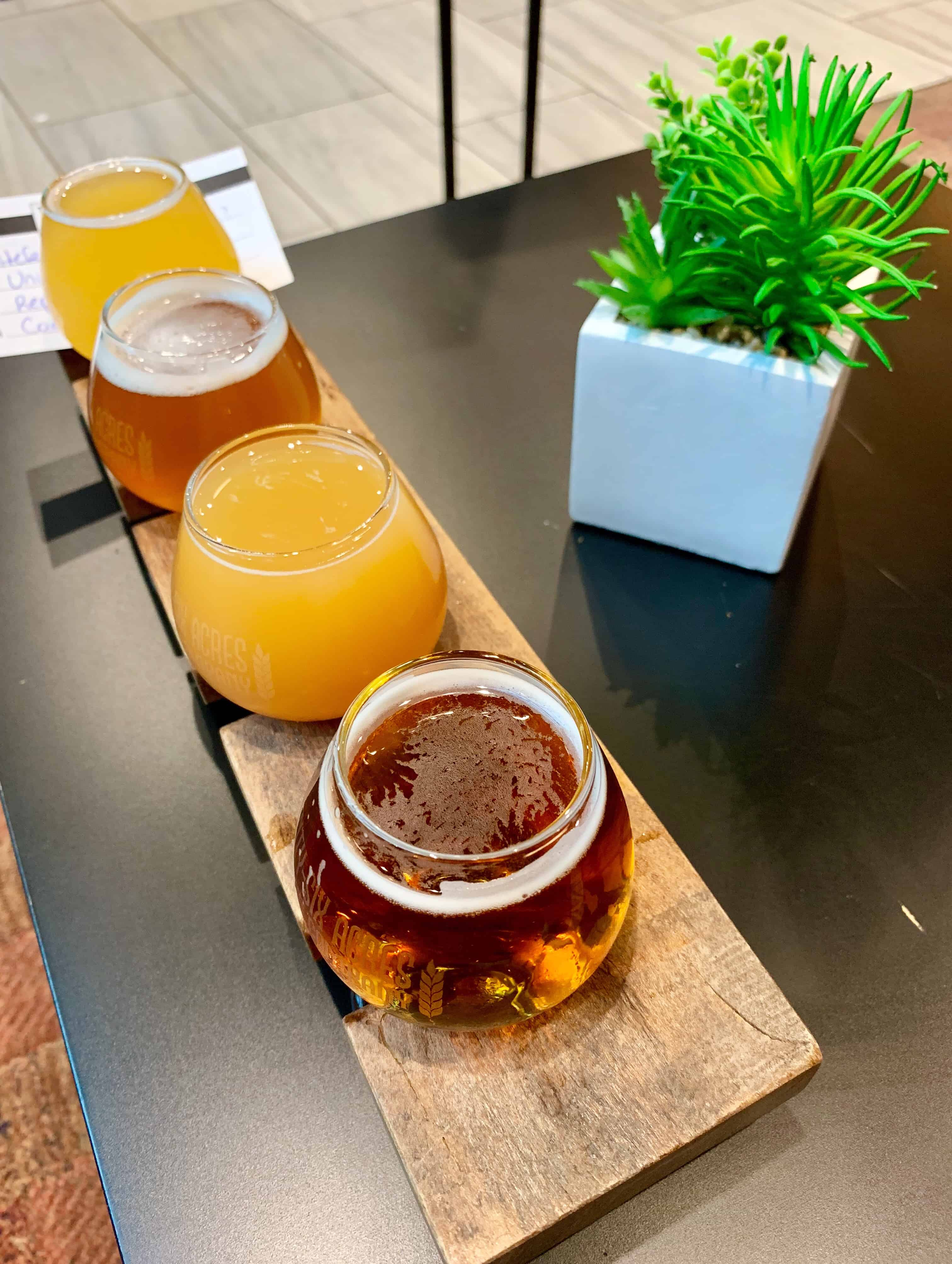 flight of 4 beers - Twenty-Six Acres Brewing, Concord, NC