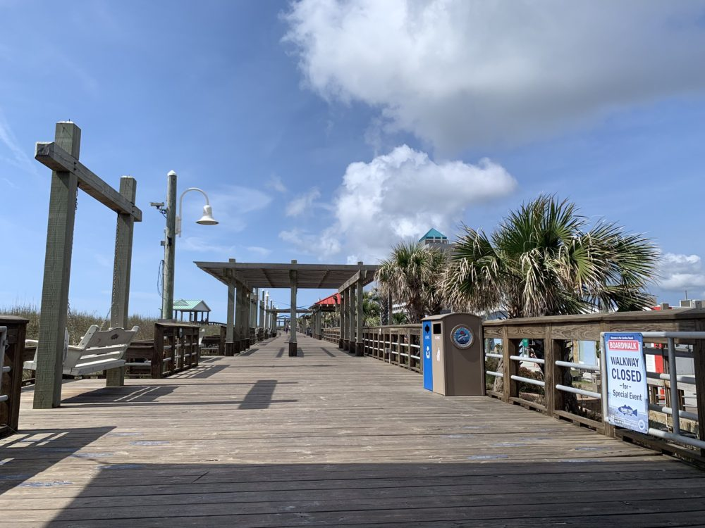 wooden pier with palm trees to the right