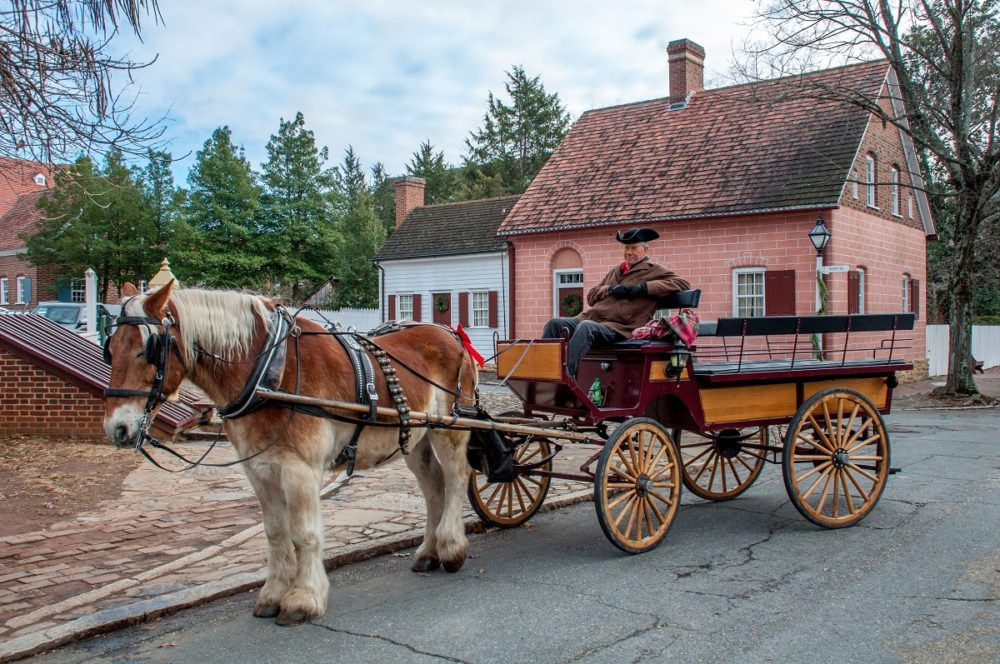 horse-drawn carriage in front of 1700s and 1800s buildings.
