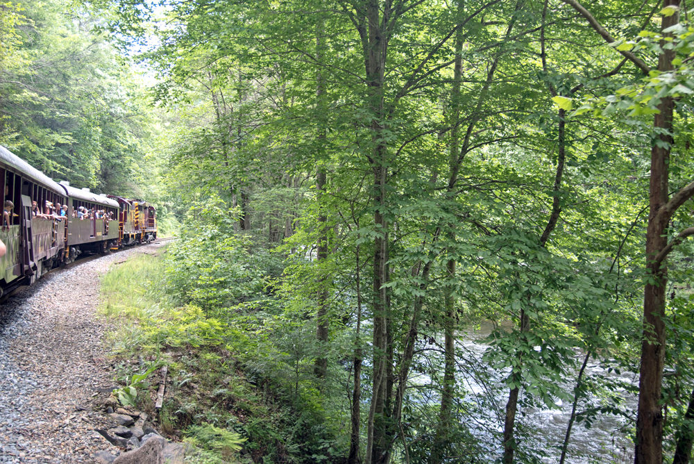 Bryson Railroad with trees