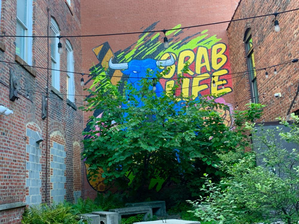 "mural of blue bull with ""Grab Life by the Horns"" on brick buildings in Durham"