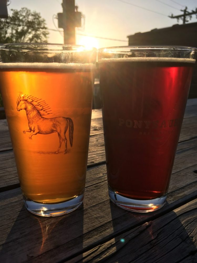 Ponysaurus Brewing pint glasses at sunset