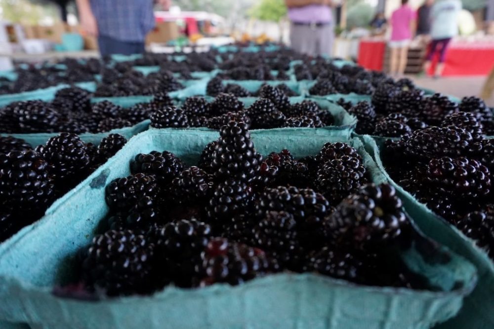 A Weekend in Shelby NC featured by top NC travel blog, The Common Traveler: blackberries at Shelby's Foothills Farmers Market