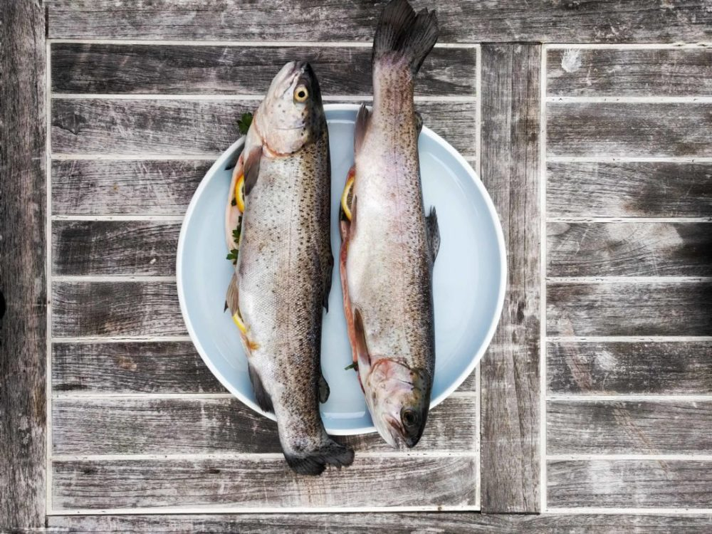 two fish on a plate on a wooden slat table