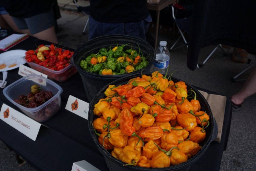 containers with different colors and types of habaneros