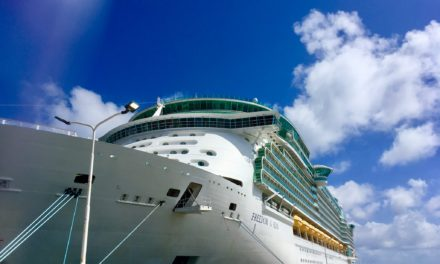 Top 11 Tips for a Smooth Disembarkation Day