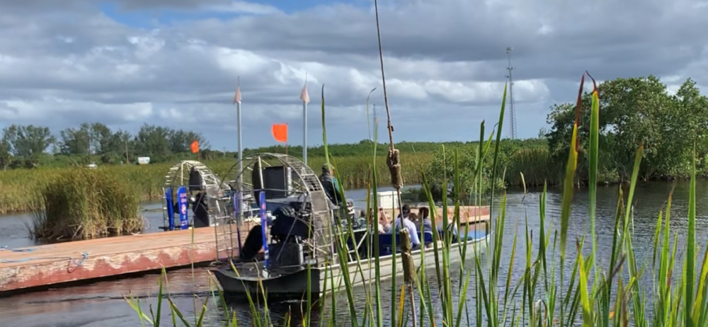 Everglades airboat tours in Naples, FL - best Naples, Florida activities for Outdoor lovers