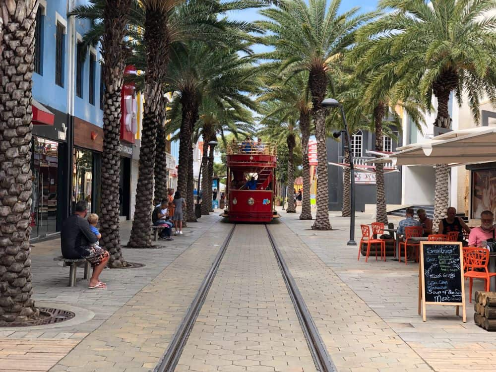 Aruba Sightseeing tips featured by top travel blog, The Common Traveler: palm lined main street in Aruba