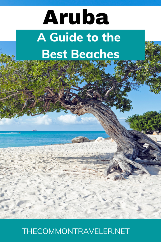 "Aruba should be first on your list of ""must-see"" places. Here are some of Aruba's best and most popular beaches every visitor should see. Click here! #aruba #caribbean #arubabeaches #caribbeanbeaches #babybeach #palmbeach #eaglebeach #divibeach #flamingobeach #arashibeach #mangelhaltobeach"