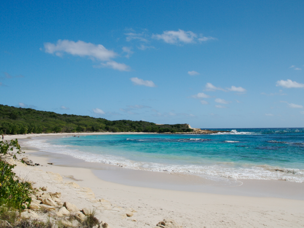Image: Half Moon Bay in Antigua