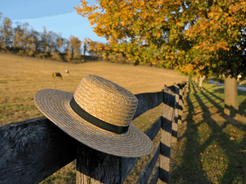 Amish hats on fence post in front of field