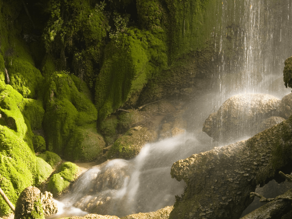 waterfall over rocks with moss covered rocks at Colorado Bend State Park in Texas