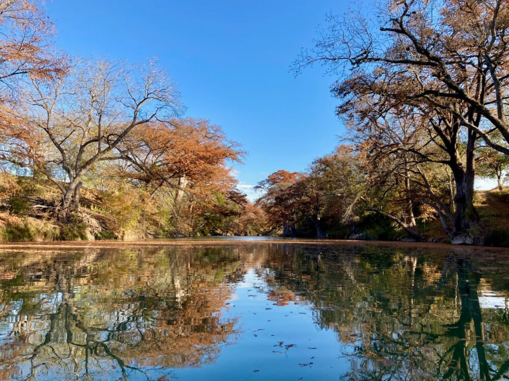 fall trees reflecting in the river at Guadalupe River State Park, Texas