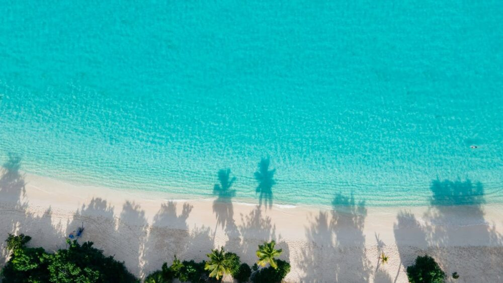 Image: aerial view of Honeymoon Beach on St. John, USVI. |Best Things to do in the US Virgin Islands: image of  Honeymoon Beach in St. John.