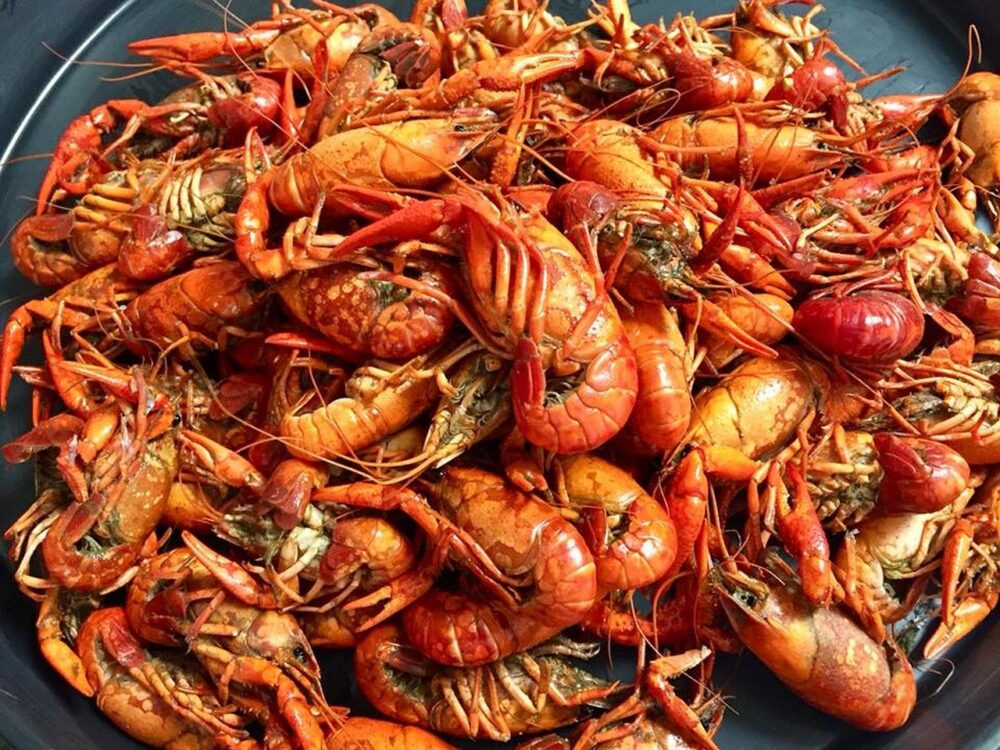 Best Day Trips from New Orleans | The Common Traveler | image: crawfish | New Orleans Day Trips by popular US travel blog, The Common Traveler: image of crawfish.