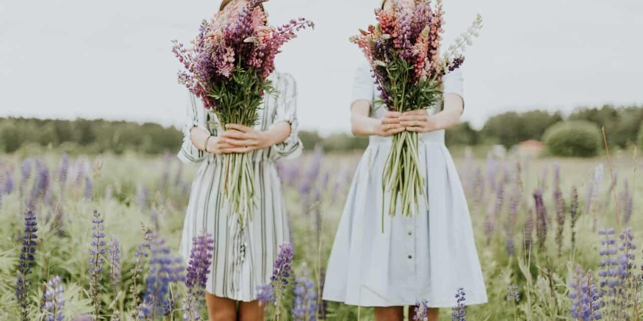 10 Lavender Farms in Virginia to Visit!